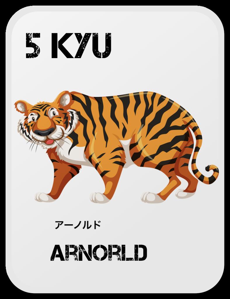 Aikido Copii Arnold
