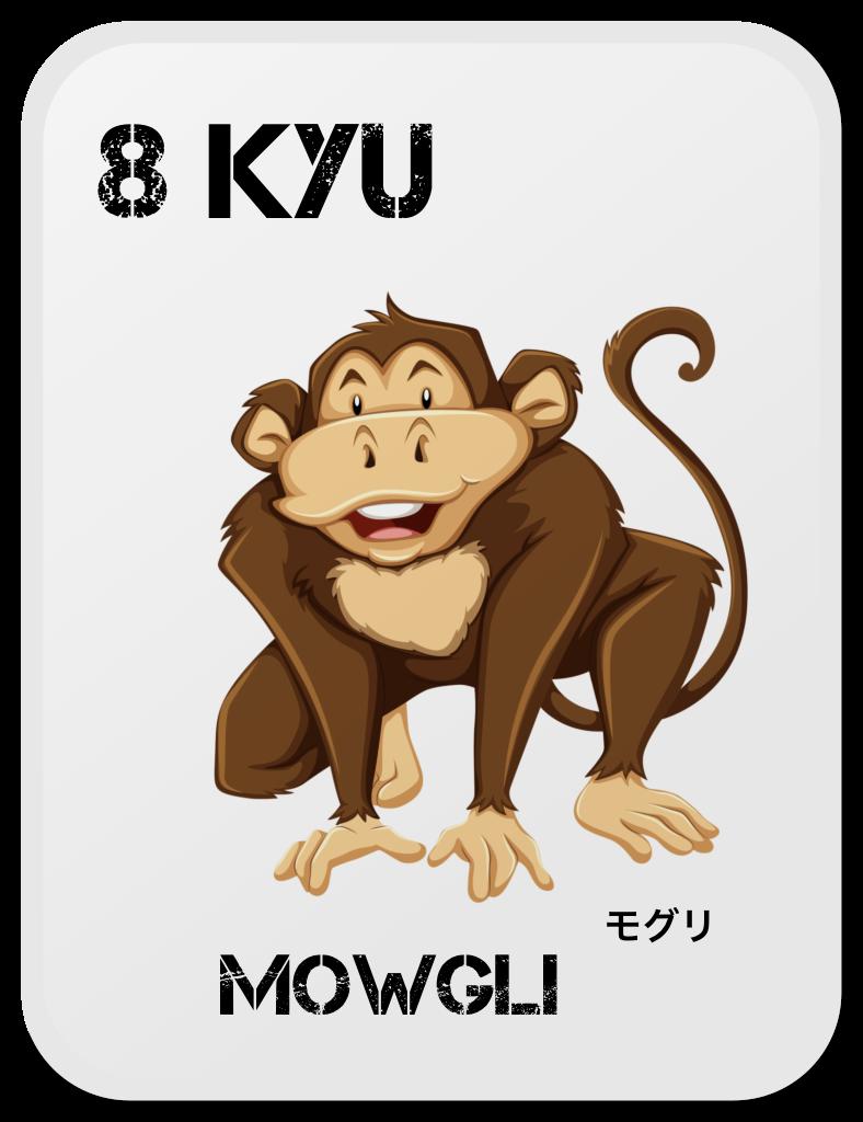 Aikido Copii Mowgli