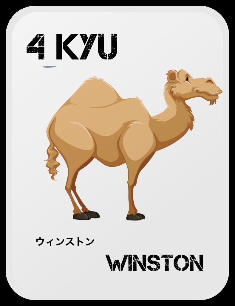 Aikido Copii Wiston